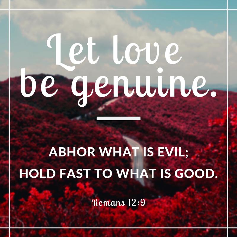 Let love be genuine - Cornerstone Impact Update